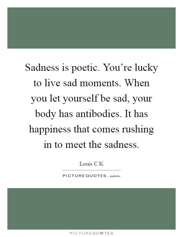 Sadness is poetic. You're lucky to live sad moments. When you let yourself be sad, your body has antibodies. It has happiness that comes rushing in to meet the sadness Picture Quote #1