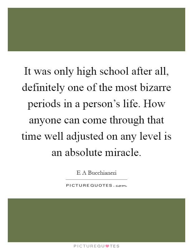 It was only high school after all, definitely one of the most bizarre periods in a person's life. How anyone can come through that time well adjusted on any level is an absolute miracle Picture Quote #1