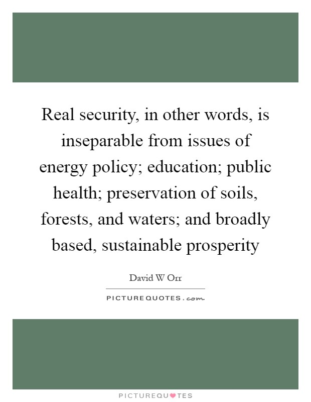 Real security, in other words, is inseparable from issues of energy policy; education; public health; preservation of soils, forests, and waters; and broadly based, sustainable prosperity Picture Quote #1