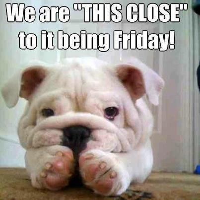 Funny Happy Thursday Quote | Quote Number 636670 | Picture ...