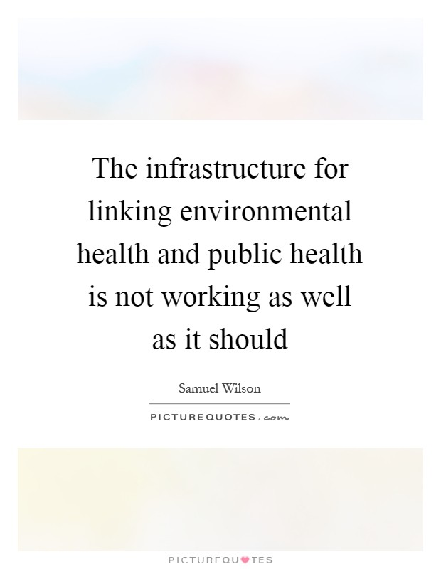 The infrastructure for linking environmental health and public health is not working as well as it should Picture Quote #1