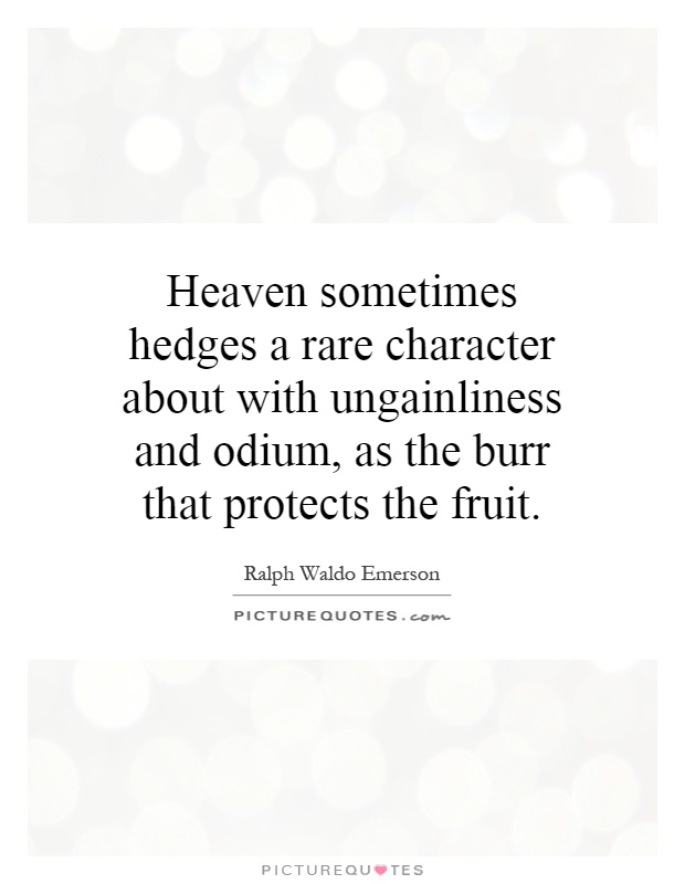 Heaven sometimes hedges a rare character about with ungainliness and odium, as the burr that protects the fruit Picture Quote #1