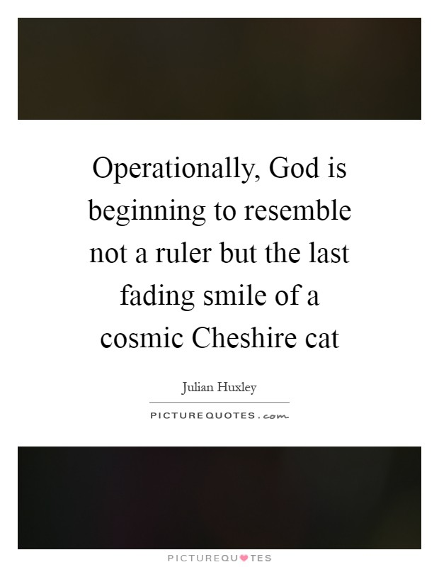 Operationally, God is beginning to resemble not a ruler but the last fading smile of a cosmic Cheshire cat Picture Quote #1