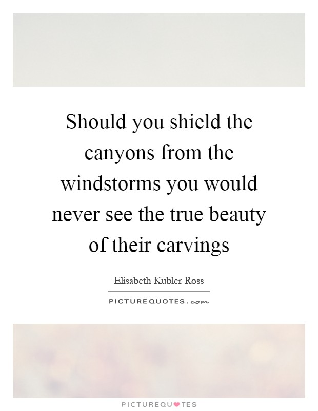 Should you shield the canyons from the windstorms you would never see the true beauty of their carvings Picture Quote #1