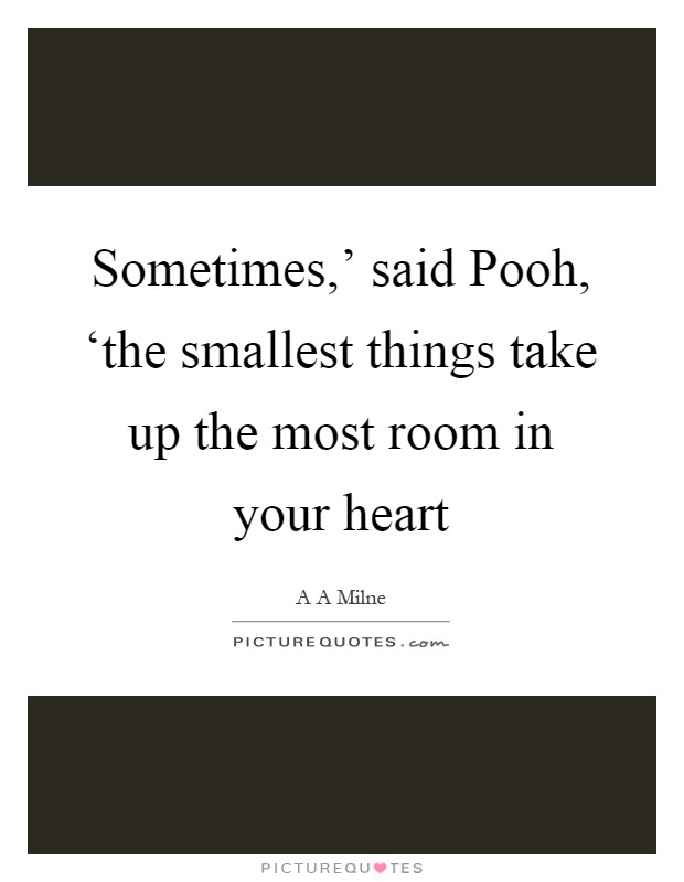 Sometimes,' said Pooh, 'the smallest things take up the most room in your heart Picture Quote #1