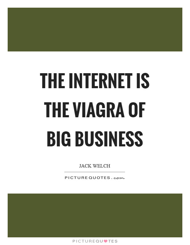 The Internet is the Viagra of big business Picture Quote #1
