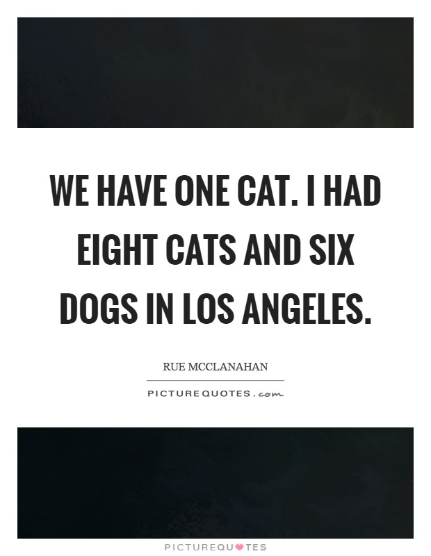 We have one cat. I had eight cats and six dogs in Los Angeles Picture Quote #1