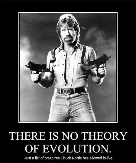 Funny Evolution Quote 3 Picture Quote #1