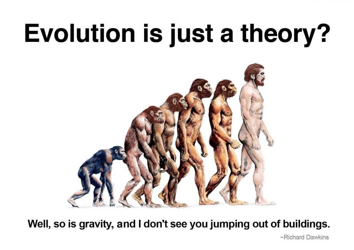 Evolution Quote 2 Picture Quote #1