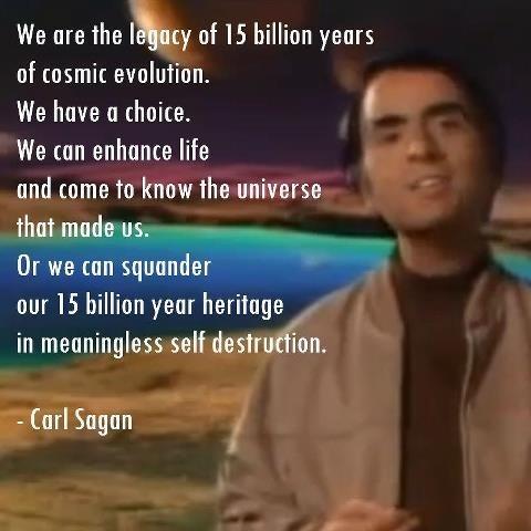 Carl Sagan Evolution Quote 1 Picture Quote #1