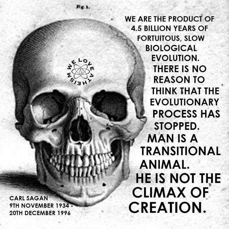 Carl Sagan Love Quote: Carl Sagan Evolution Quote