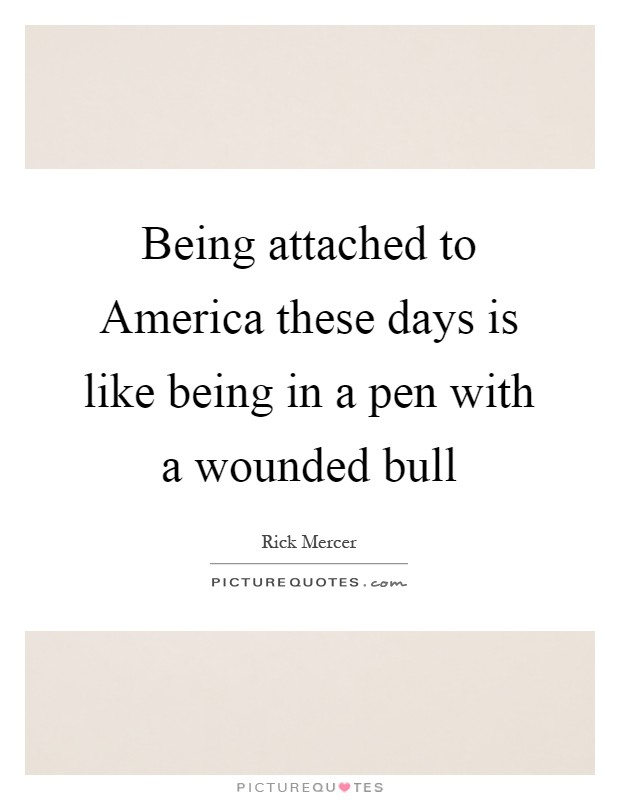 Being attached to America these days is like being in a pen with a wounded bull Picture Quote #1