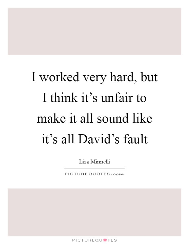 I worked very hard, but I think it's unfair to make it all sound like it's all David's fault Picture Quote #1