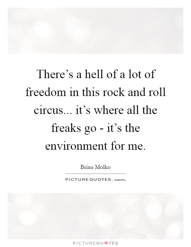 There's a hell of a lot of freedom in this rock and roll circus... it's where all the freaks go - it's the environment for me Picture Quote #1