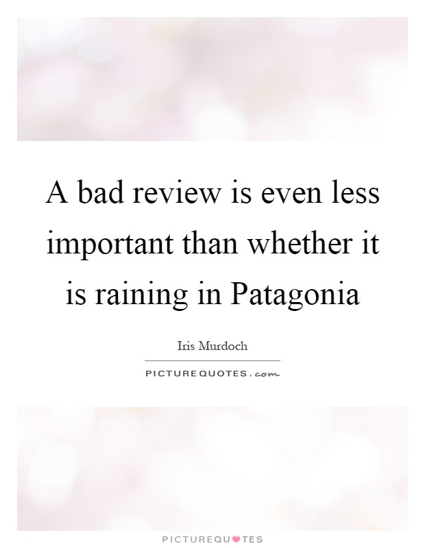 A bad review is even less important than whether it is raining in Patagonia Picture Quote #1