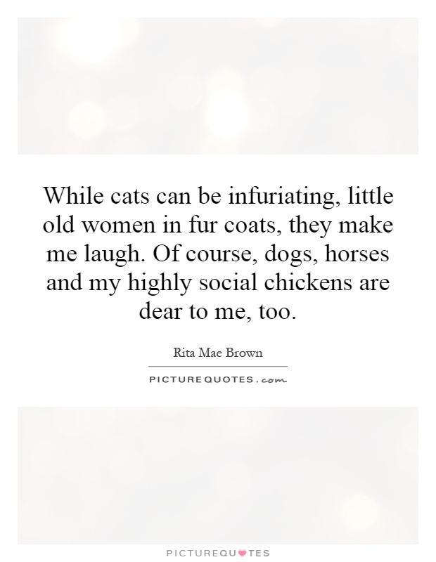 While cats can be infuriating, little old women in fur coats, they make me laugh. Of course, dogs, horses and my highly social chickens are dear to me, too Picture Quote #1