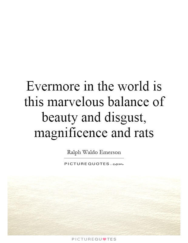 Evermore in the world is this marvelous balance of beauty and disgust, magnificence and rats Picture Quote #1