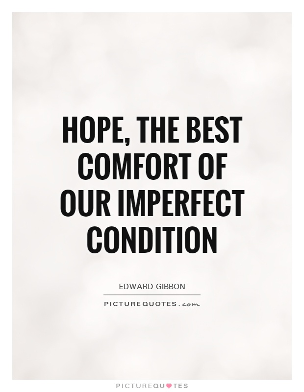 Hope, the best comfort of our imperfect condition Picture Quote #1