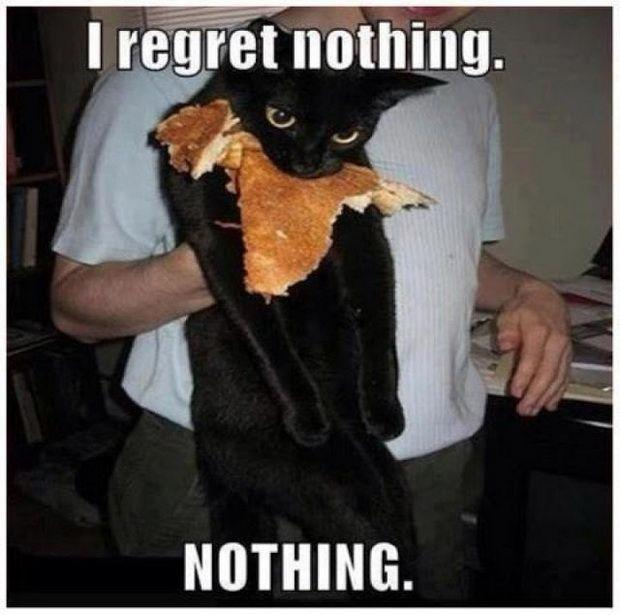 I regret nothing. Nothing! Picture Quote #1