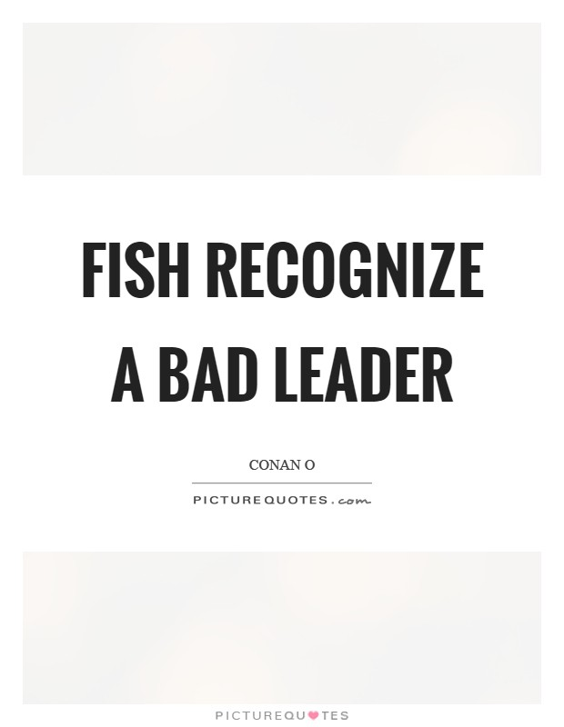 Bad Leadership Quotes Delectable Fish Recognize A Bad Leader  Picture Quotes