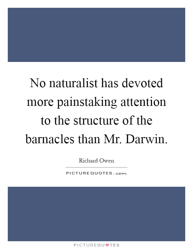 No naturalist has devoted more painstaking attention to the structure of the barnacles than Mr. Darwin Picture Quote #1