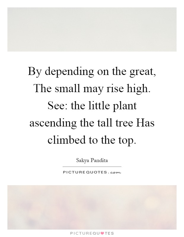 By depending on the great, The small may rise high. See: the little plant ascending the tall tree Has climbed to the top Picture Quote #1