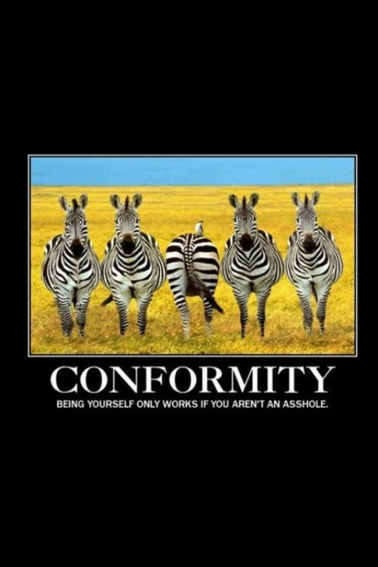 Conformity Quote 5 Picture Quote #1