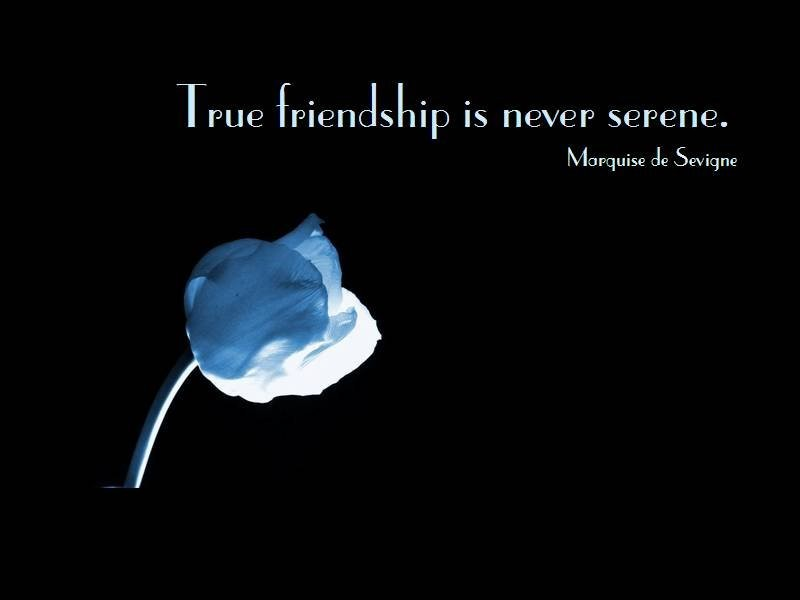 Famous Friendship Quote 3 Picture Quote #1