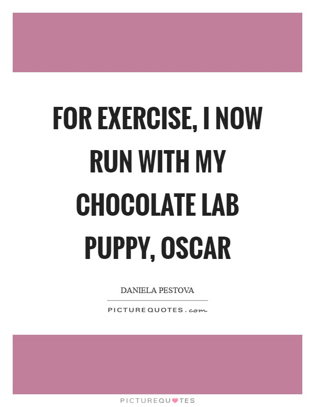 For exercise, I now run with my chocolate Lab puppy, Oscar Picture Quote #1