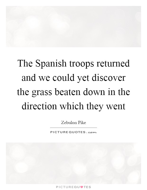 The Spanish troops returned and we could yet discover the grass beaten down in the direction which they went Picture Quote #1
