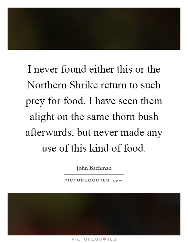 I never found either this or the Northern Shrike return to such prey for food. I have seen them alight on the same thorn bush afterwards, but never made any use of this kind of food Picture Quote #1