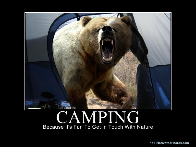 Camping Quote 7 Picture Quote #1