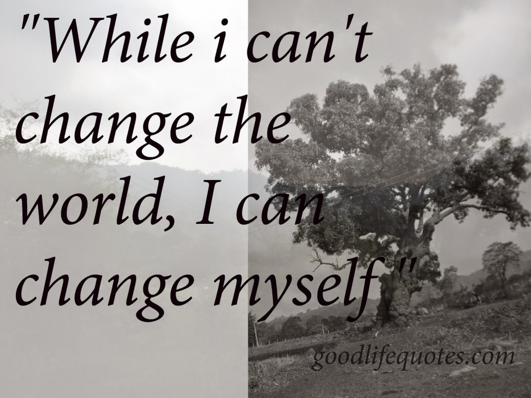 Cant Change The World Quote 1 Picture Quote #1