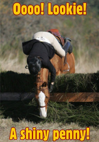 Funny Horseback Riding Quote 1 Picture Quote #1