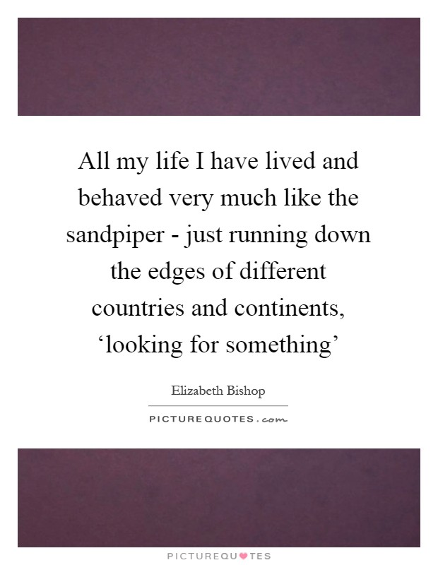 All my life I have lived and behaved very much like the sandpiper - just running down the edges of different countries and continents, 'looking for something' Picture Quote #1