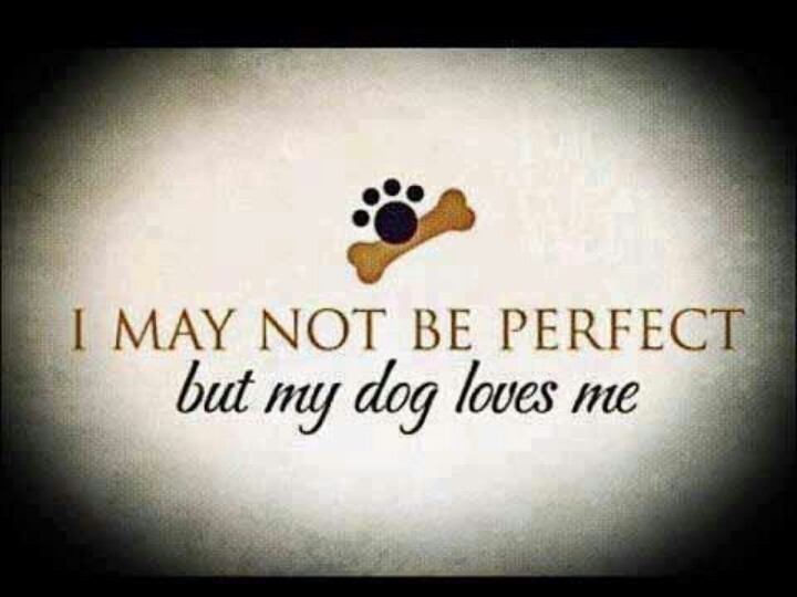 My Dog Loves Me Quote 1 Picture Quote #1
