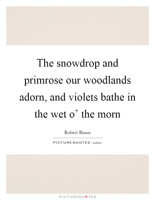 The snowdrop and primrose our woodlands adorn, and violets bathe in the wet o' the morn Picture Quote #1