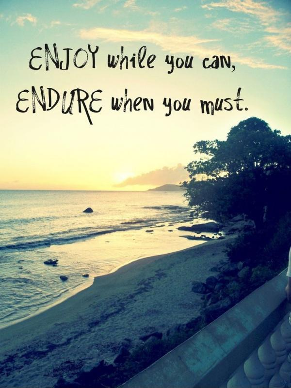 Enjoy while you can, endure when you must  Picture Quotes