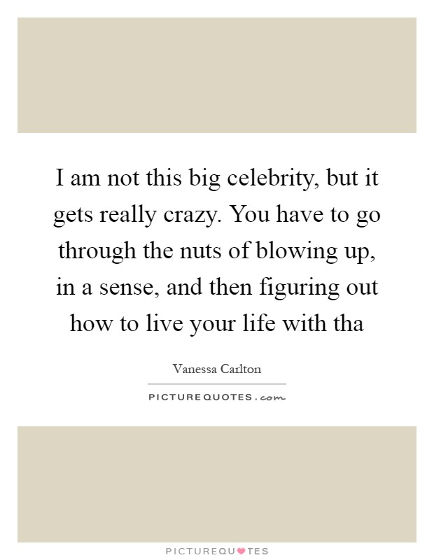 I am not this big celebrity, but it gets really crazy. You have to go through the nuts of blowing up, in a sense, and then figuring out how to live your life with tha Picture Quote #1