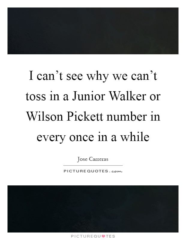 I can't see why we can't toss in a Junior Walker or Wilson Pickett number in every once in a while Picture Quote #1