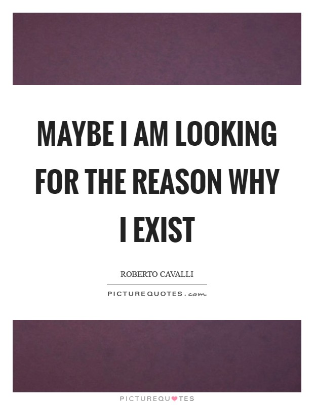 Maybe I am looking for the reason why I exist Picture Quote #1