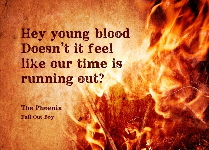 Phoenix Fall Out Boy Song Quote 3 Picture Quote #1