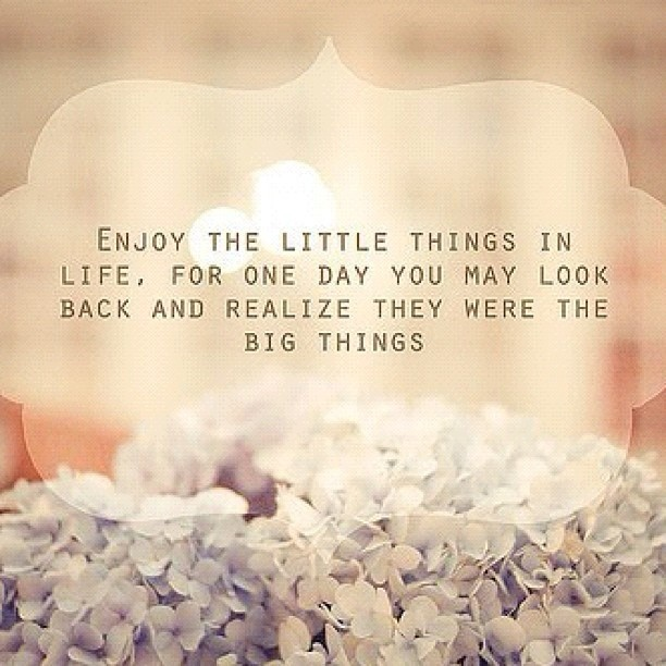 Cherish The Little Things Quote 1 Picture Quote #1