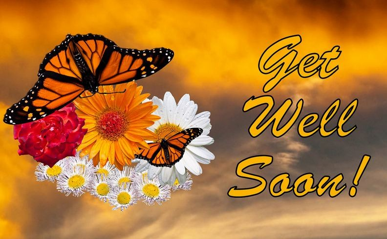 Get Well Wishes Quote 1 Picture Quote #1
