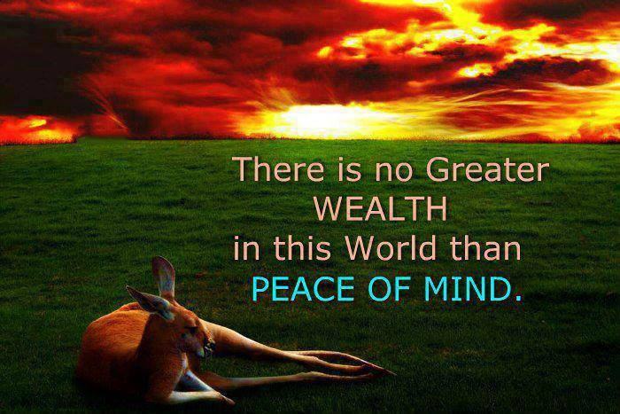 Wealth Quote 5 Picture Quote #1