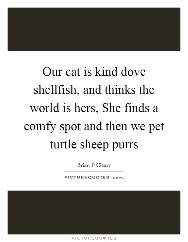 Our cat is kind dove shellfish, and thinks the world is hers, She finds a comfy spot and then we pet turtle sheep purrs Picture Quote #1