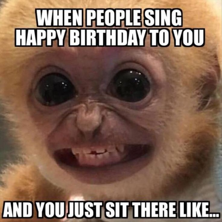 When people sing happy birthday to you and you just sit there like Picture Quote #1