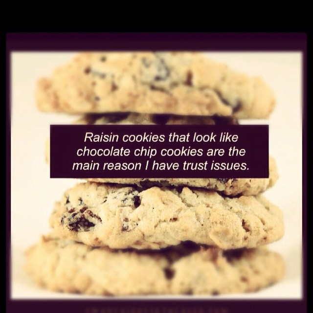 Choclate Chip Cookie Quote 1 Picture Quote #1