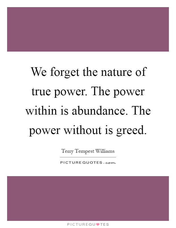 We forget the nature of true power. The power within is abundance. The power without is greed Picture Quote #1