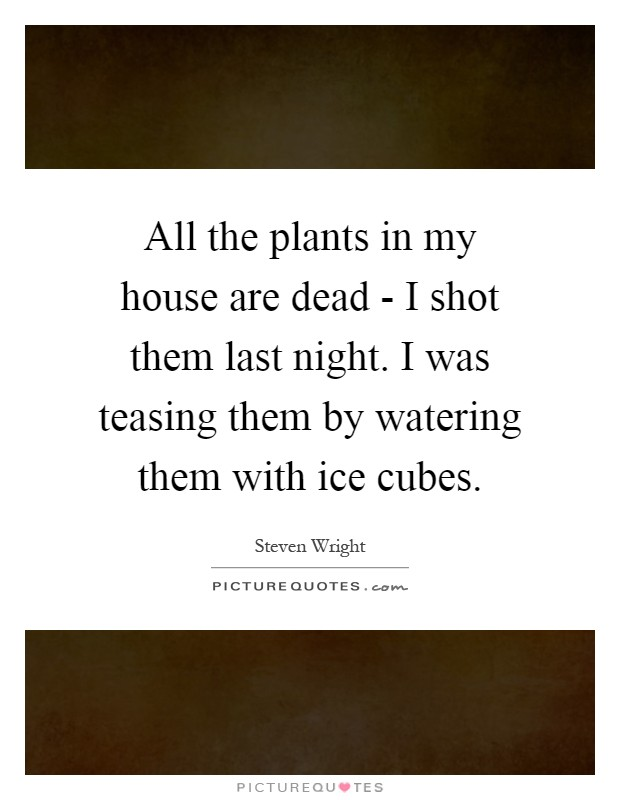 All the plants in my house are dead - I shot them last night. I was teasing them by watering them with ice cubes Picture Quote #1